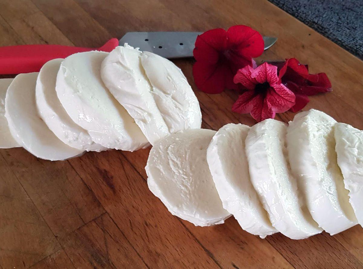 Ricetta mozzarella in carrozza light